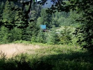 deadwoodsummer